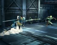 Gray Fox Brawl 3