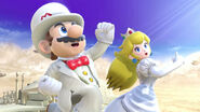 Profil Mario Ultimate 6