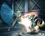 Gray Fox Brawl 2