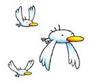 Vignette Albatros