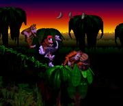 JungleCongo DDC