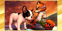 Félicitations Fox 3DS Classique