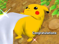 Félicitations Pikachu Melee All-Star