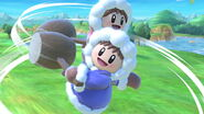 Profil Ice Climbers Ultimate 6