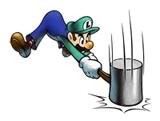 Vignette Luigi M&LSS