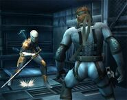 Gray Fox Brawl 4