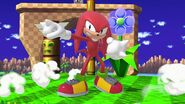 Knuckles Ultimate 1