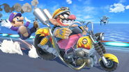 Profil Wario Ultimate 5