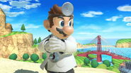 Profil Dr. Mario Ultimate 1