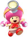 Art Toadette TT