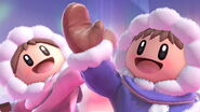 Profil Ice Climbers Ultimate 1