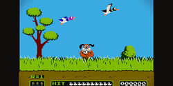 Image illustrative de l'article Duck Hunt