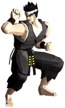 Art Akira Virtua Fighter