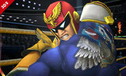 Captain Falcon SSB4 Profil 9