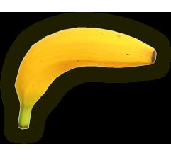 Image illustrative de l'article Pistobanane