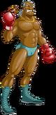 Art Super Macho Man Wii