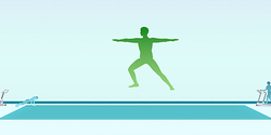 Image illustrative de l'article Studio Wii Fit
