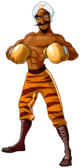 Art Great Tiger Wii