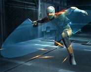 Gray Fox Brawl 1