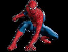 Spider man PNG44