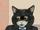 President Black Cat