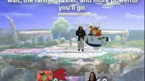 Smash Bros Brawl Character Moveset - Dr