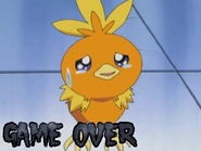Game Over Torchic