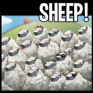 Sheep promo