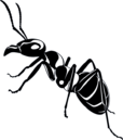 Giant Ants-0