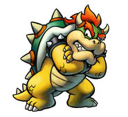 Bowser Turtle