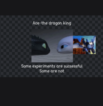Ace the dragon king cover