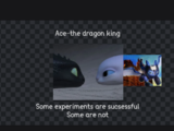 Ace-the dragon king