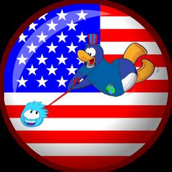 Asa's flag