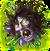 AhPuch-CorpseakaLandmines