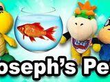 Joseph's Pet!