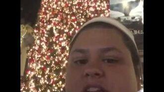 Merry Christmas vine-1