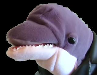 Loan Dolphin Supermariologan Wiki Fandom Powered By Wikia