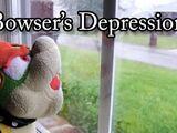 Bowser's Depression