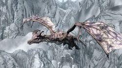 Legendary Dragon 01