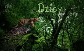 Dzicy