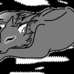 Moja wilczyca Akela