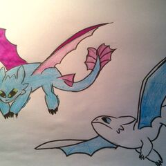 Mutro(niebiesko-fioletowy) i Klaudia(biało-niebieska)
