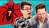 EATING REAL SPIDERS WITH JOSHUADTV