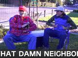 That Damn Neighbor (video)