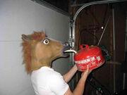 Funny-wtf-horse-mask-gasoline