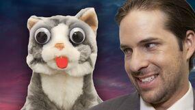 Retarded Cats The Movie