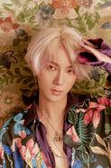 Yesung replay photo