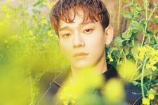 Chen (April and a Flower) 11
