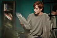 Kangta autumn breeze photo