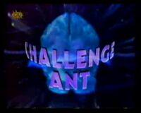 Challenge Ant